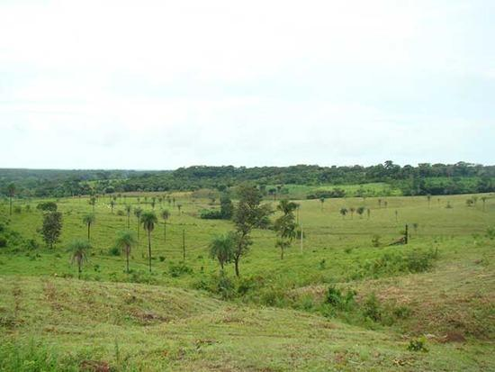 Farmland for sale in Tocantins Brasil
