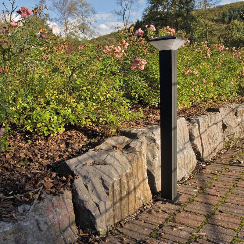 Borne lumineuse LED Hartford de haute qualité - Bornes lumineuses inox