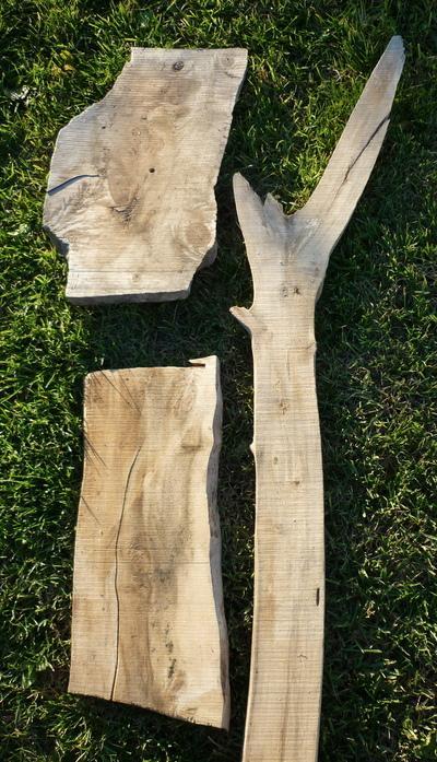 Bois flott entreprises for Fournisseur bois flotte