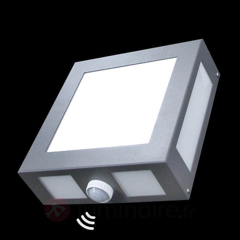 Applique d'extérieur Legendo - Appliques d'extérieur avec détecteur
