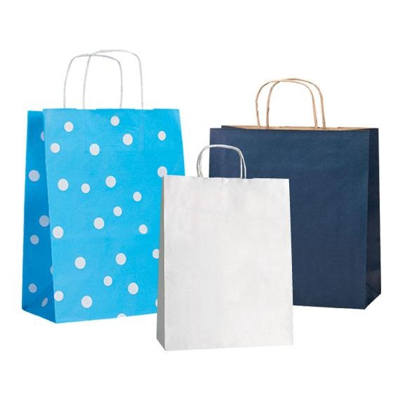 twisted handle and flat handle bag - Paper Bag