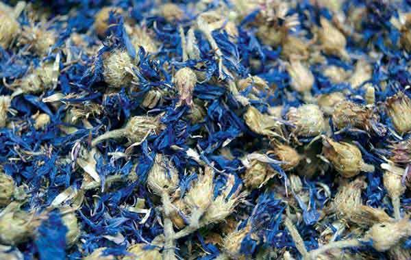 Eau de Bleuet - eau florale