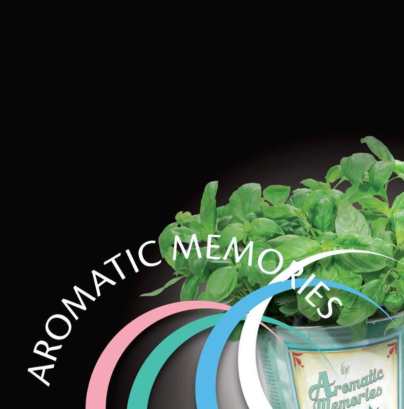 AROMATIC MEMORIES by VIGO - null