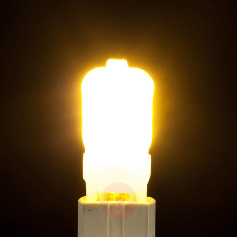 G9 2.5 W 830 LED bi-pin bulb, opal - light-bulbs