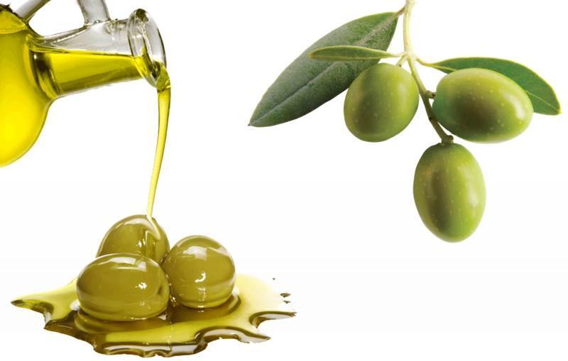 Organic Olive Oil - cold pressed, extra virgin - OLEA EUROPAEA FRUIT OIL