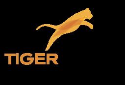 Tiger Trade的B2B平台正在全球超额折扣行业掀起一场革命