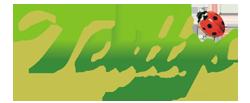 Κλινική Έρευνα για τη χρήση της Άλγης στο Τσάϊ