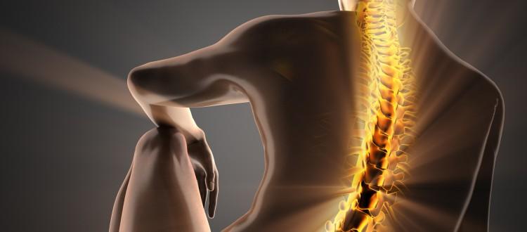 Rücken-Workshop mit EMG-Diagnostik & Stabilizer