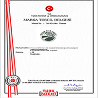 Brand Certification 2018