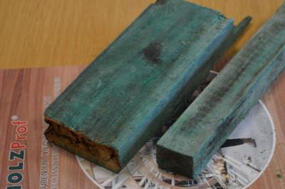 Средство для защиты дерева Holz Bio