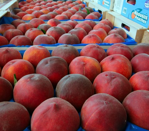 Peaches with Protected Designation of Origin (PDO) Naoussa
