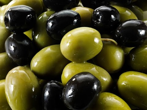 World famous for its KALAMON OLIVES