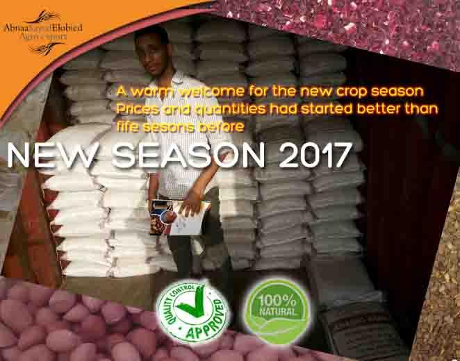 New season 2017