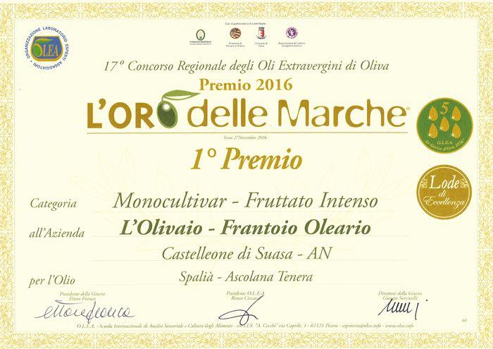 1° Classificato concorso regione L'Oro delle Marche