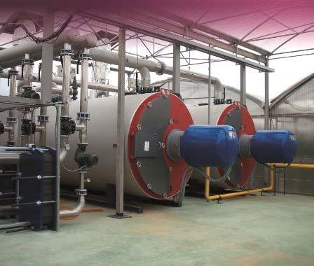 Proyecto medioambiental de E&M Combustión en China