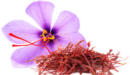 Special wholesale offer for Iranian saffron.