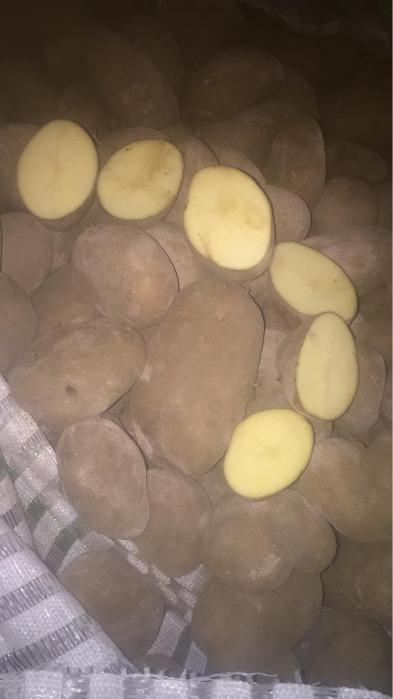 Patata en oferta
