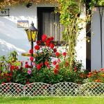 Декоративный забор ROMANIKA