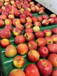 Яблоко в ассортименте