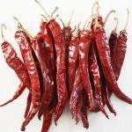 Dried Red chilli spices 17