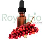 Organic Grapeseed Vegetable Oil