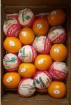 Egyptian Fresh Navel orange