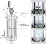 Hydrogenation reactor