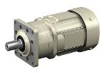 ALTAX NEO Getriebemotor