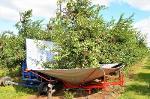 Fruit Tree Shaker Harvester GACEK