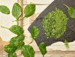 Spinat - Spinatblätter - Spinatpulver - Spinach - Bio Spinat