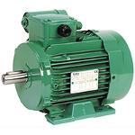 Single-phase TEFV induction motors