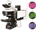 3d Scanning Laser Raman Microscopes Provide Rapid, High Sensitivity Analysis