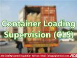 Container Loading Supervision (CLS)