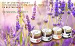Assorted set of Creamed Honey with natural ingridients