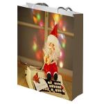 Lovely paper bag for christmas