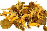 grossiste Chanterelles