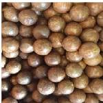 In Shell Macadamia Nuts