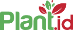 Plant.id