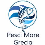 Pesce all'ingrosso