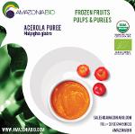 Organic Acerola Puree