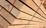 Wood Timber / Lumber