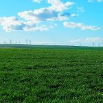 Diminua os custos da energia reativa!