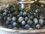 Bilberry juice (vaccinium myrtillus) pasteurized