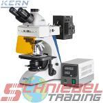 Durchlichtmikroskop (Fluoreszenz) [Kern OBN-14]