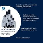Submersible motors / Motores sumergibles