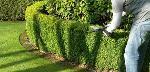 Jardinage Bricolage domicile clermont-ferrand