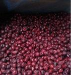 IQF sour cherry pitted