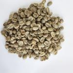 Roasted coffee beans and ARABICA green cofee bean Grade A