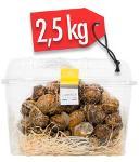 LUMACHE HELIX ASPERSA MULLER 2,5kg