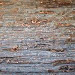 Rustic Wood Panels